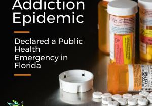 fl governor declares opioid addiction health emergency